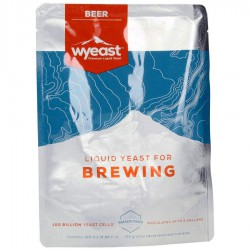Biergist WYEAST XL 1762 Belgian Abbey II