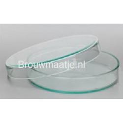 Petrischaal glas 80x15 mm (M)